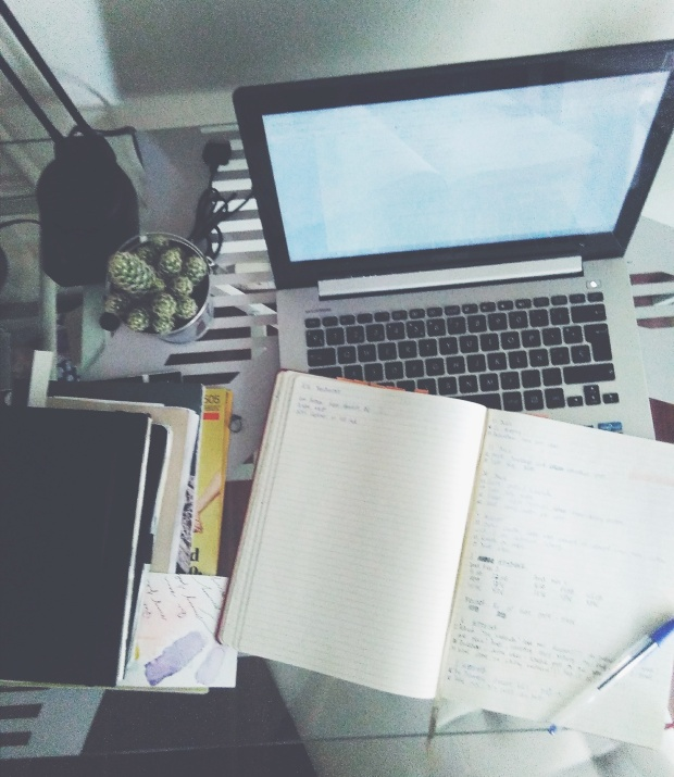 laptop notebook desk work cactus